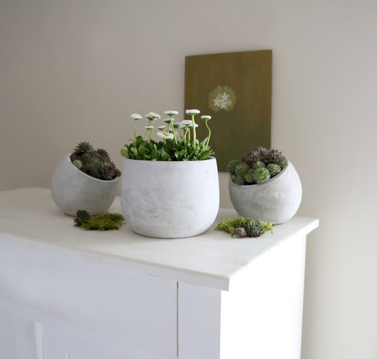 Whitewashed Cement Planters