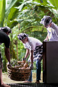 The best pineapples in Bali are delivered to our kitchen