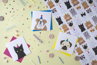 cat and dog cards and wrapping paper