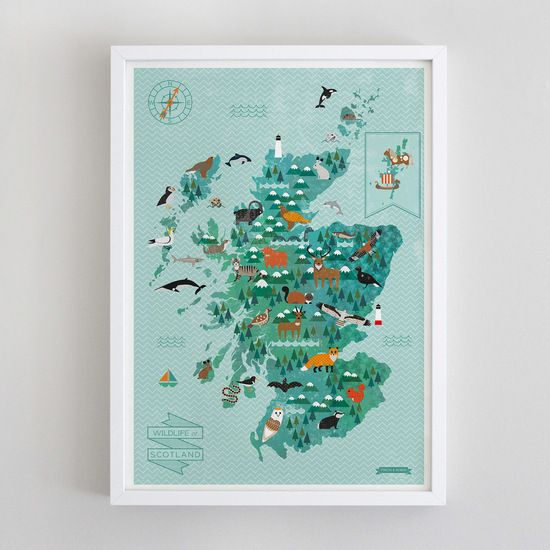 Scottish Wildlife Map