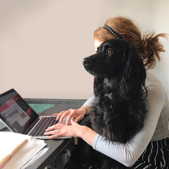 Graphic design studio with dog