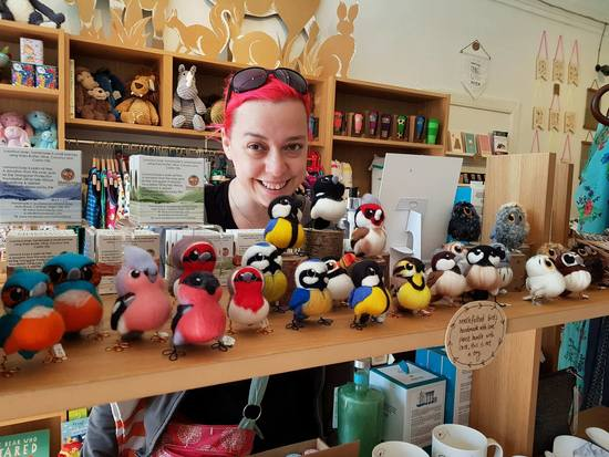 Melanie Ann Green with a selection of her needle felted birds