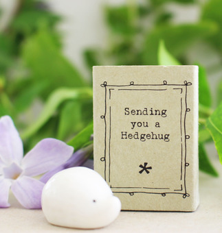 Sending you a Hedgehug Letterbox gift