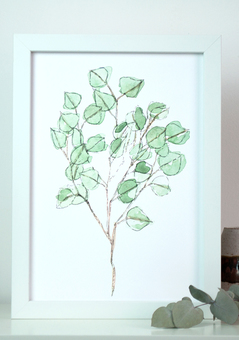 Illustrated succulent art print