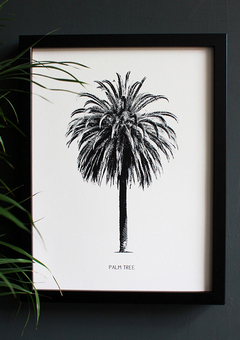 Encyclopaedic Palm Tree Fine Art Print