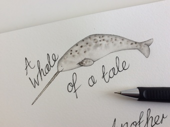 A sketch of a narwhal that later became my logo.