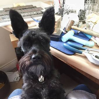 Jeffrey, our dog making sure I'm working hard at the bench