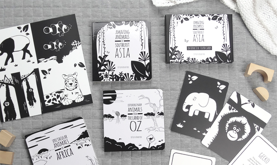 The Little Black & White Book Project collection