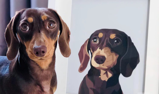 Faced Personalised Pet Portrait