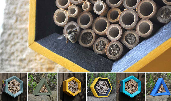 Image showing mason bee using a honeycomb bee house & assorted bee hotels