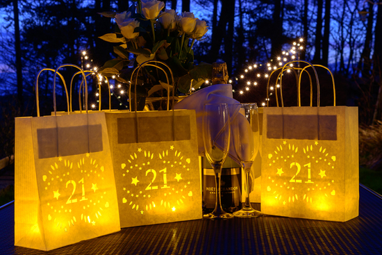 21st birthday lantern decorations