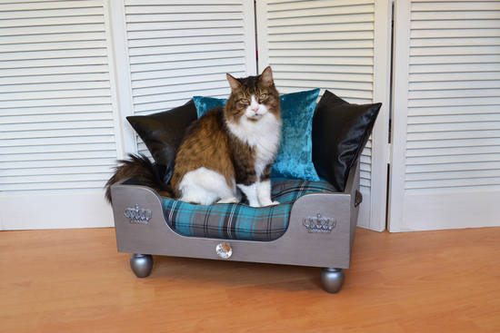 Cosy Chic Pet Boutique Cat Bed The Elton Turquoise Grey Tartan