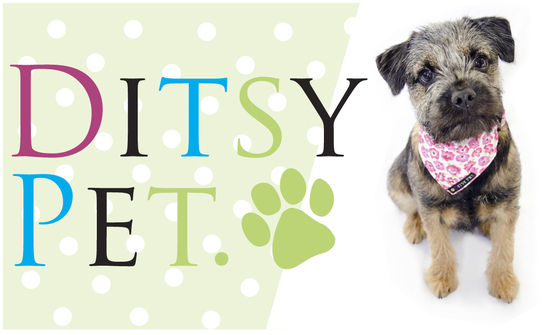 Ditsy Pet dog accessories