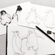 All of our illustrations are drawn by hand, working together