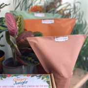 The Ginger Jungle Packaging
