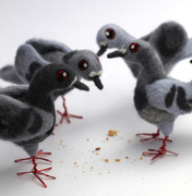 Needle Felted Pigeons