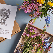 FlowerBe Botanical Box