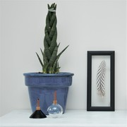 Award-winning Porcelain Vases | Framed Silver Pheasant Feather