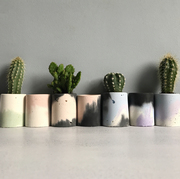 Line of cement planters