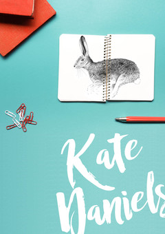 Kate Daniels illustrated hare sketckbook