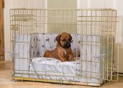 Dog sitting in a dog crate with dog cushion and bumper set