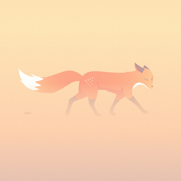 Quinn the Fox illustration