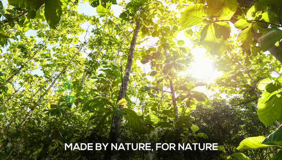 Made By Nature, For Nature