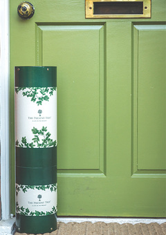 Beautifully wrapped tree gift delivered to their door.