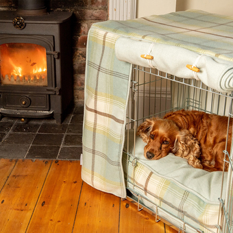 Cocker Spaniel in a dog crate with tweed crate cushion and bumper