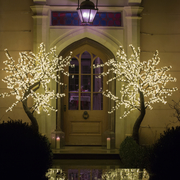 Led Trees standing proud either side of a doorway
