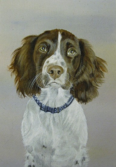 One of my personalised pet portraits.