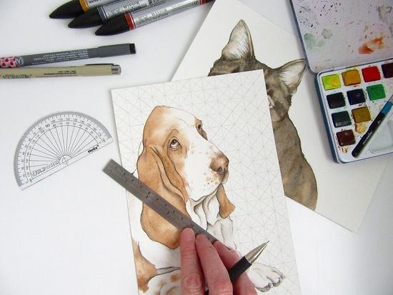 Adding background pattern to a watercolour pet portrait.