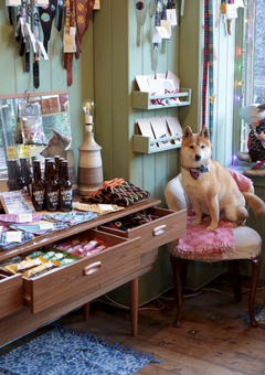 Hiro + Wolf Margate shop