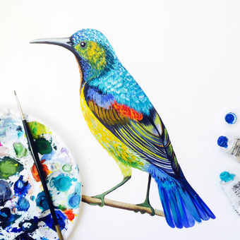 handpainted,watercolour, print, illustration, floral print, birds, giclee, wildlife print