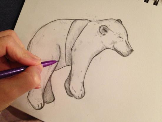 Sketching a Polar Bear