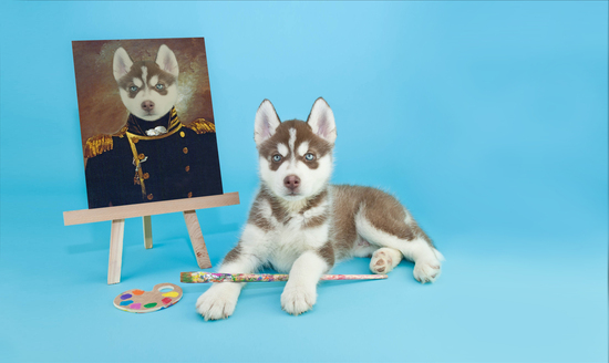 Personalised royal pet portrait