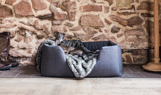 Luxury dog beds by Charley Chau